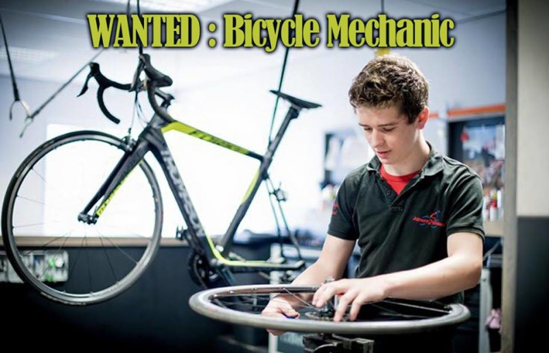 Job Offer by Thompson -  Bicycle Mechanic