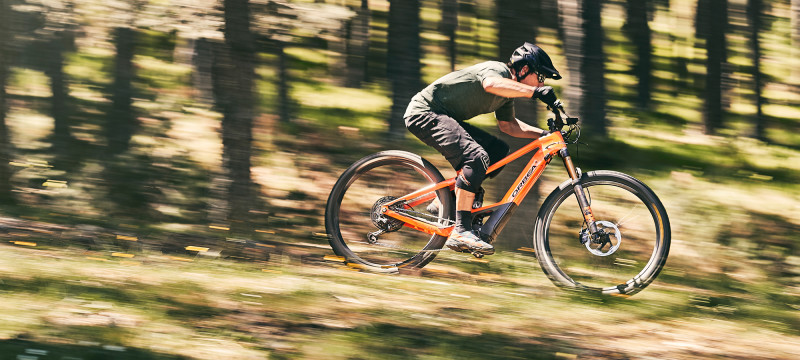 Take Back Control, Take Back Your Wild.  Introducing the New Orbea Wild FS