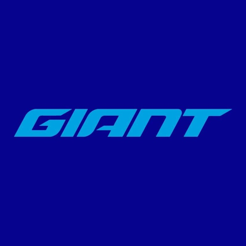 Job Offer by Giant Bicycles - Marketing Manager