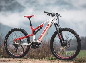New GASGAS E-Bikes - Performance Bikes that Ignite the Fun of Two-Wheeled Action!